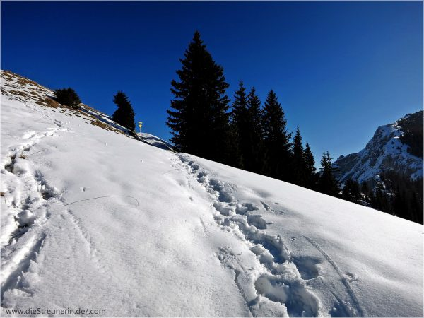 Brentenjoch Tannheimer Berge