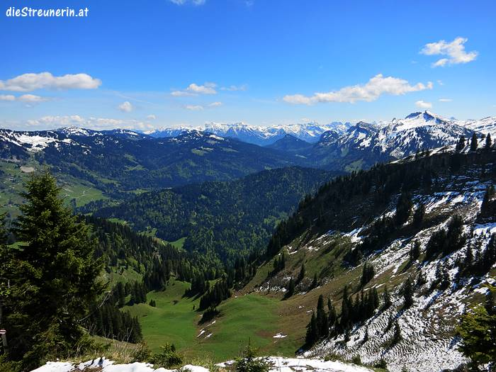 Bullerschkopf, Bregenzer Wald
