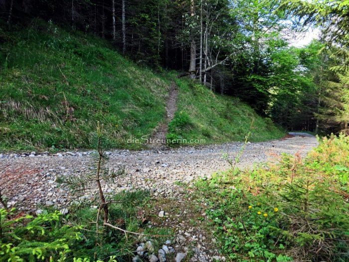 Schwarzhanskarspitze, Mahdspitze, Lechtaler Alpen, Wanderung, Liegfeistgruppe
