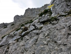 Kohlbergspitze, Zingerstein, Ammergauer Alpen