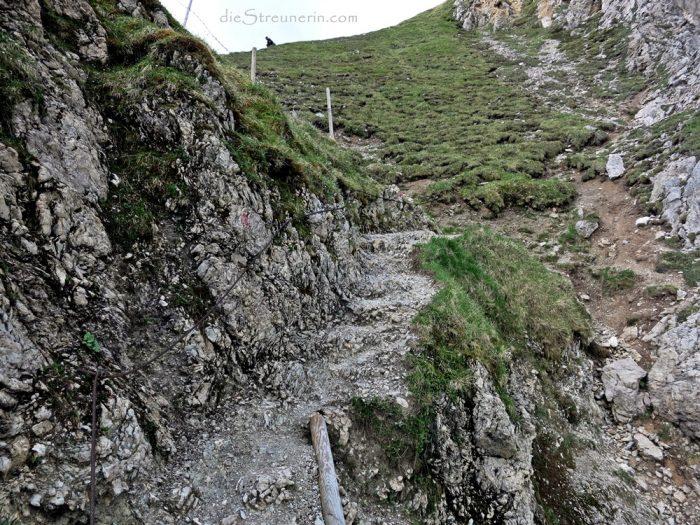 Bergtour Sulzspitze, Schochenspitze, Tannheimer Tal