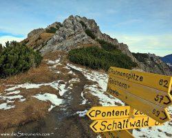 Bergtour Rohnenspitze umringt von den beschneiten Allgäuern