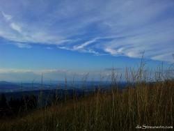 Natur_Momente