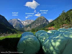 Amatschonjoch, Brandner Tal, Rätikon, Wanderung