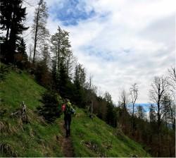 Scheinbergspitze, Ammergauer Alpen, Wanderung,