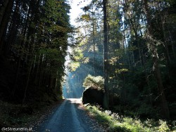 Sächsische Schweiz, Elbsandsteingebirge, Kirnitzschtal, Wanderung, Affenstein, Schrammstein