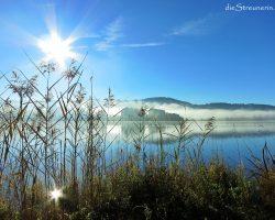 Baden im Rottachsee oder Umrundung