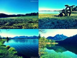 Bergsee_hopping oder Das Bergsee_Quartett
