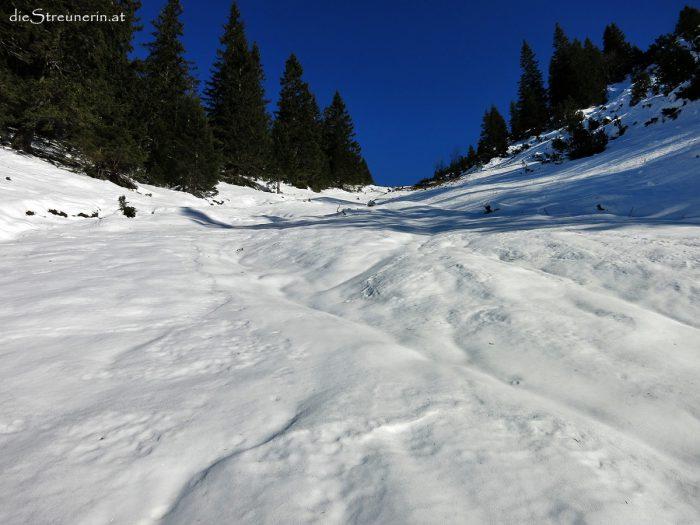 Hintersteiner Tal, Willersalpe, Zierleseck, Allgäu, Winterwandern, Schneeschuhwandern