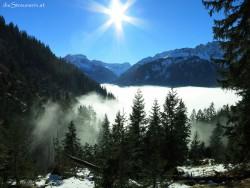 Winterwanderung zur Willersalpe. Zirleseck.