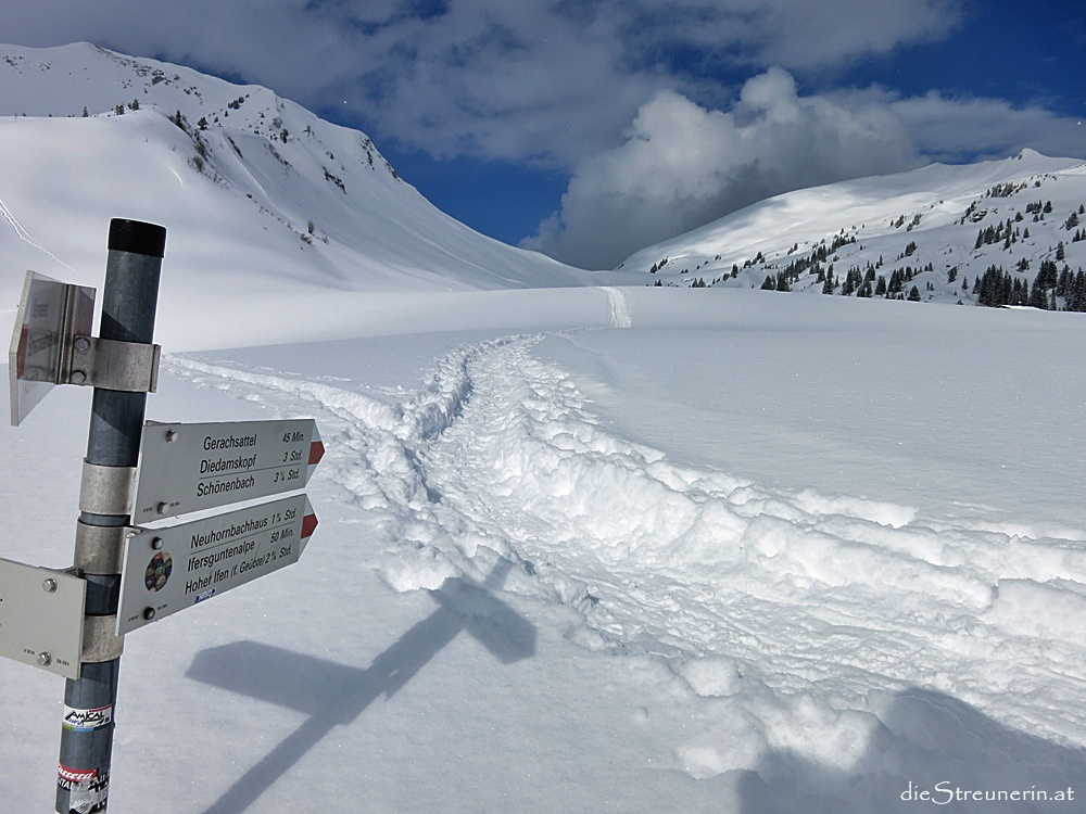 Hählekopf, Schneeschuhwanderung, Kleinwalsertal, Schwarzwasserhütte