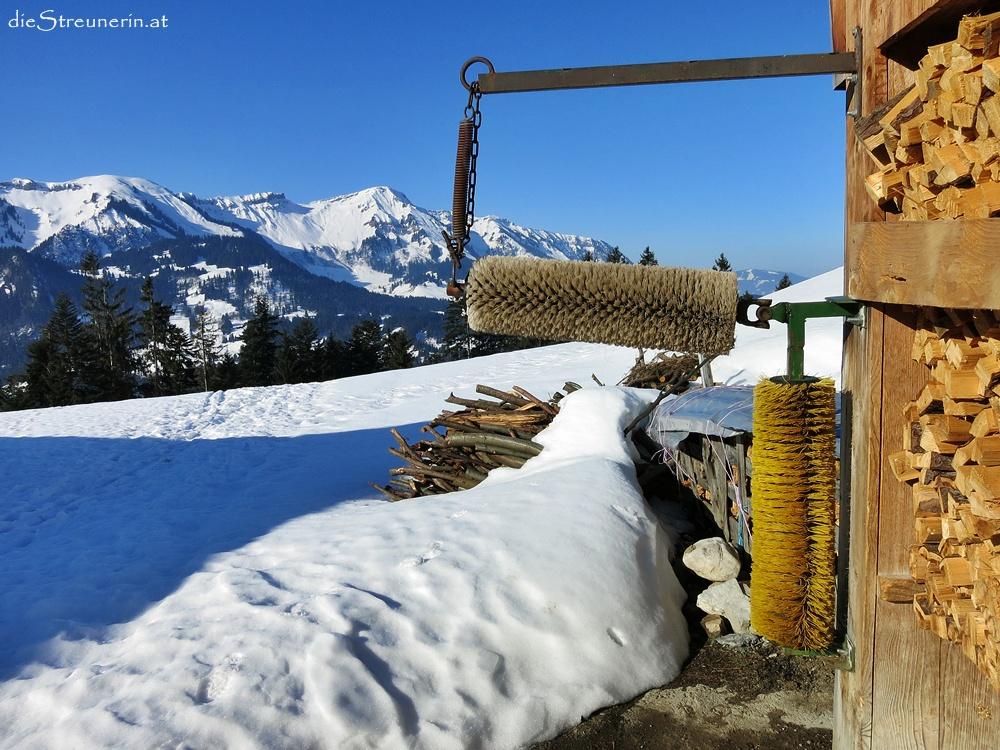 Renkknie – Almenhopping-Schneeschuhtour