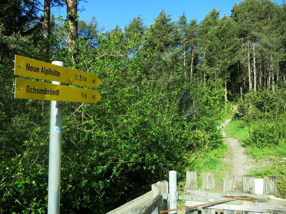 Wetterkreuz, Mieminger Kette, Wandern, Bergtour