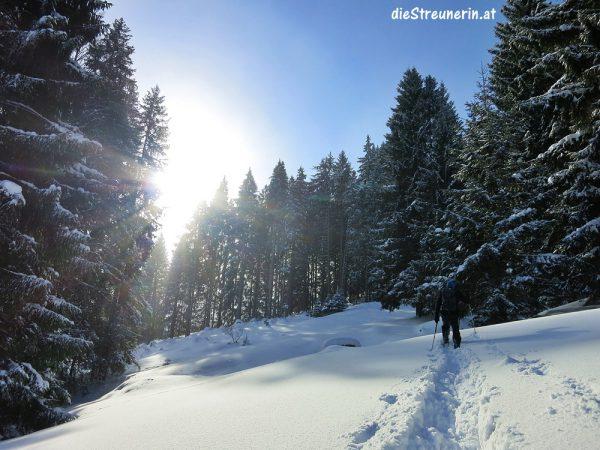 Schneeschuhtour, Winter, Allgäu, Wandern