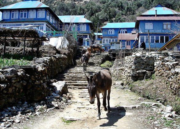 Nepal – Annapurna Trekking – Teil I