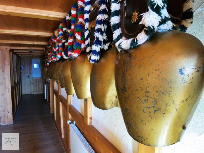 Obere Mittelalpe, Grasgehren, Riedberger Horn, Winter, Skitour, Schneeschuhtour, Allgäu