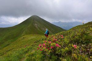 Bergregion Grossarltal