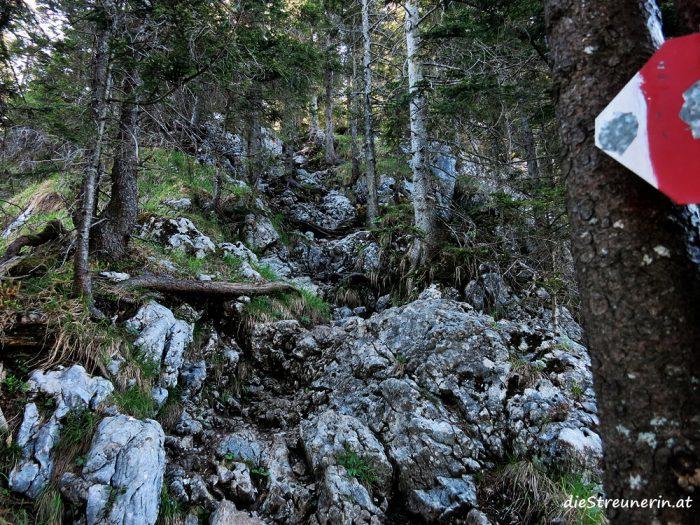 Leonhardstein, Mangfallgebirge, Kreuth