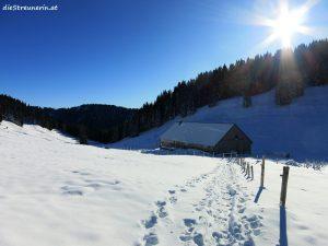 Winterwandern, Winterwanderung, Schneeschuhwandern, Gschwender Horn, Immenstädter Horn, Gschwender Bergalpe,