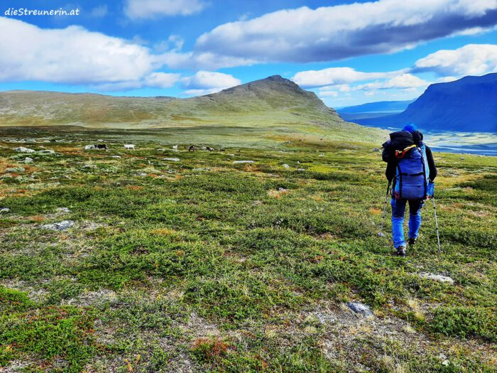 sarek, lappland schweden, durch die wildnis, nationalpark schweden