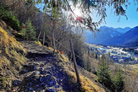 Wanderung Zipfelsalpe Hinterstein Allgäu