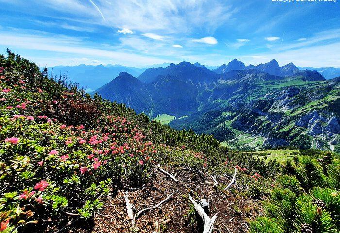Brentenjoch und Roßberg im Tannheimer Tal